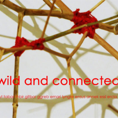 "Ausstellung ""wild and connected"""